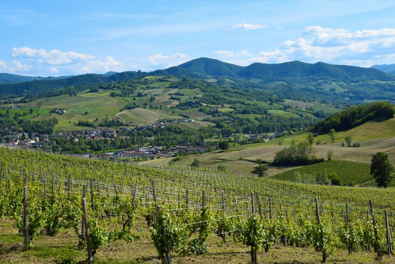 5 motivi per stare alla larga dalla Val Tidone!